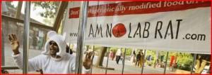 Scandale : L'Europe valide des études non-vérifiées de Monsanto sur le Mon810  dans Contrôle population et Armes cap-300x107
