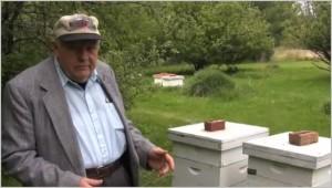 L'Illinois s'empare illégalement des abeilles résistantes au Roundup et  tue les  reines restantes  dans Contrôle population et Armes abeilles-300x170