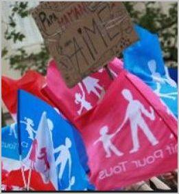 Les associations opposées au mariage homosexuel ont déposé des recours devant le Conseil d'Etat  dans Homosexuel, LGTB,Femen. Mariage pour tous drapeau