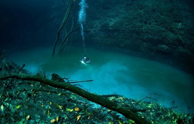 De l'eau douce dans un océan dans Contrôle population et Armes riviere