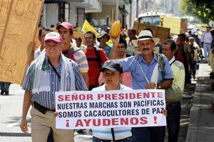 Les organisations paysannes colombiennes ont lancé une grève nationale massive dans Contrôle population et Armes colombia-protestascacaoculturas